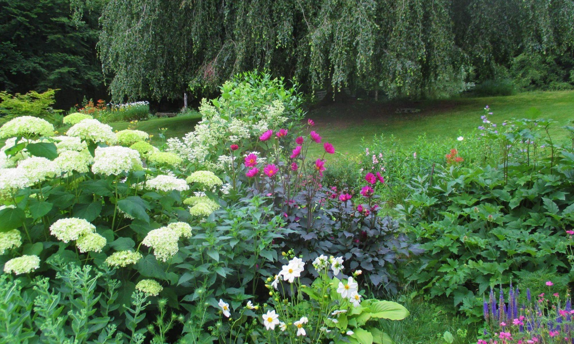 Un jardin en forêt de Darney